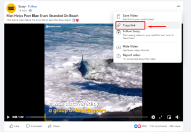 How to use FBDown video downloader?