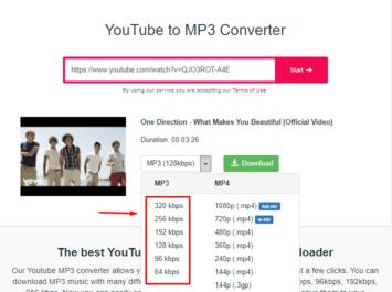 y2mate audio converter